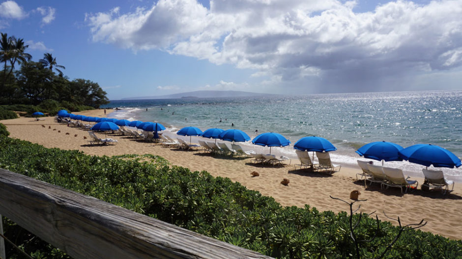 View from of the beach in Maui.